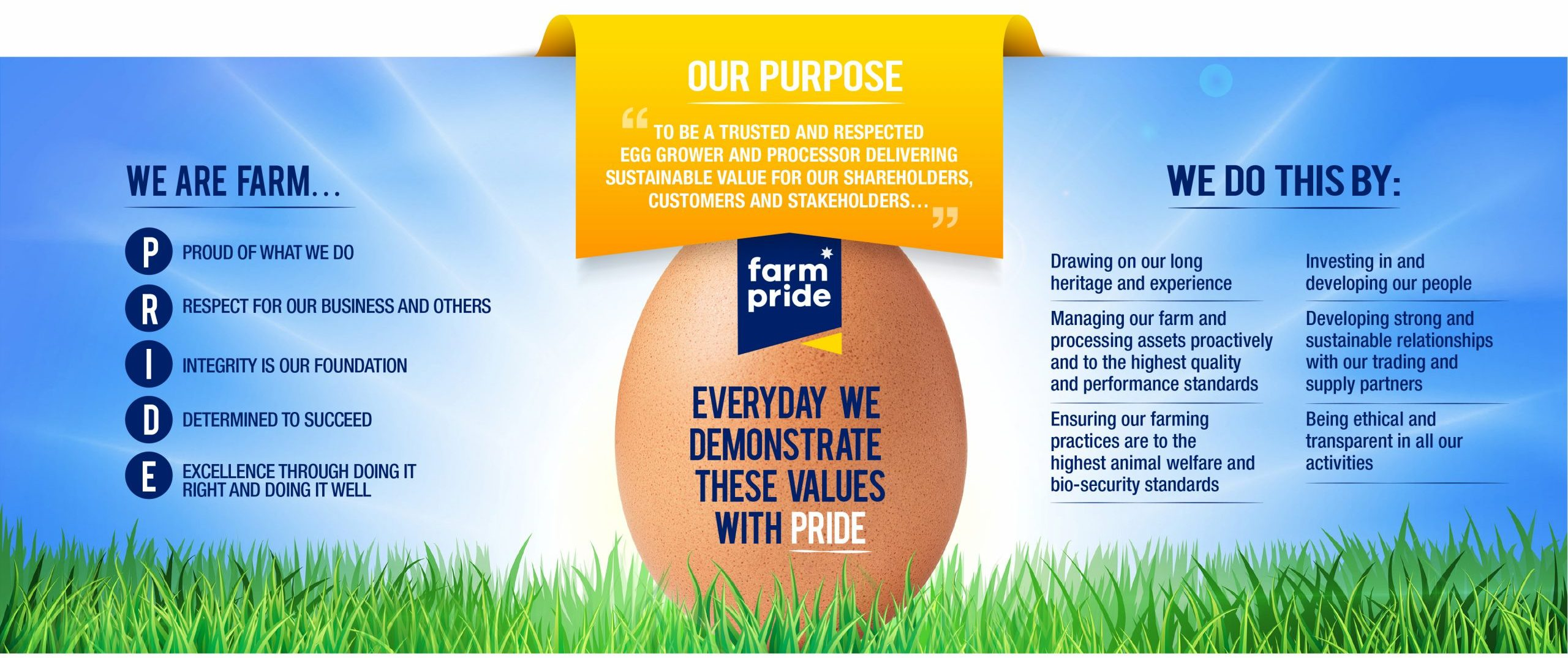 Egg in field with company values